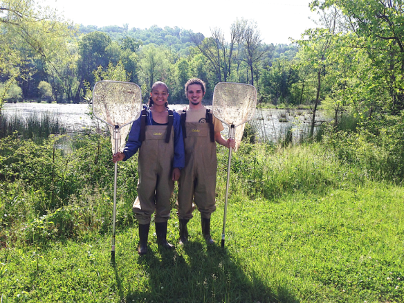 UTC students collecting giant water bugs to study mating and parental care behavior. The work was recently published in the journal Ethology and the students were co-authors on the publication.